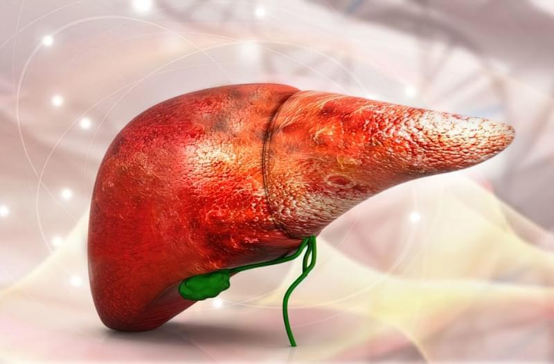 9 способів очистити печінку в домашніх умовах 1