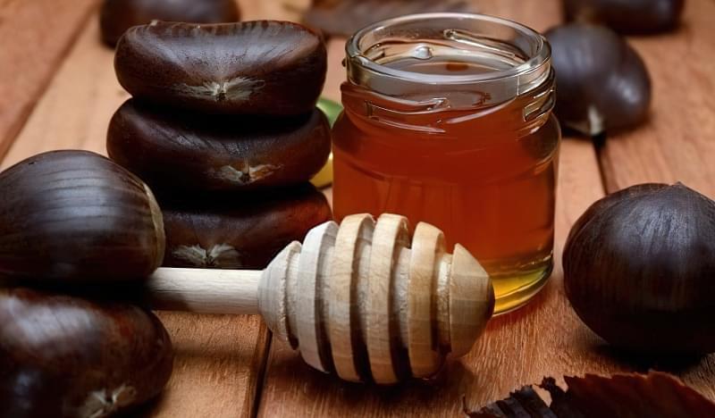 Каштановий мед: особливості, корисні властивості та протипоказання 1
