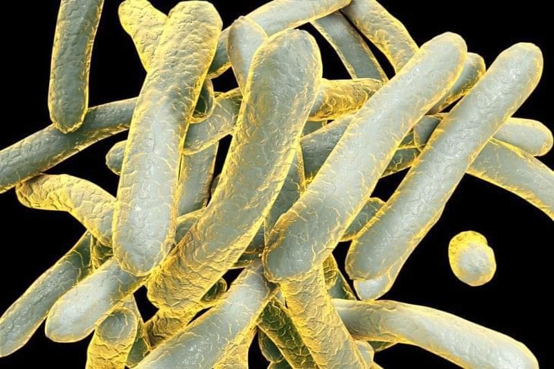 Туберкульоз кісток: симптоми, діагностика та принципи лікування 1