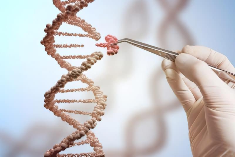Генетика може пояснити, чому контрацептиви не завжди працюють 1