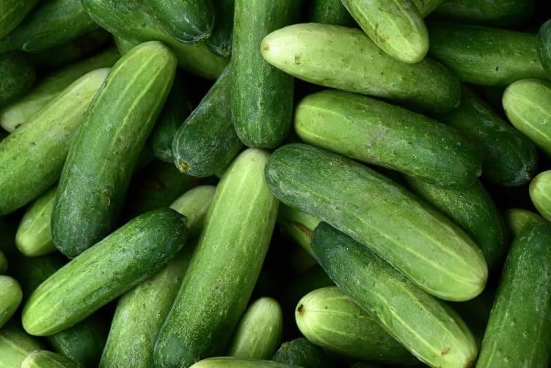 «Одна вода»: чим корисні огірки, і як їх вибрати? 2