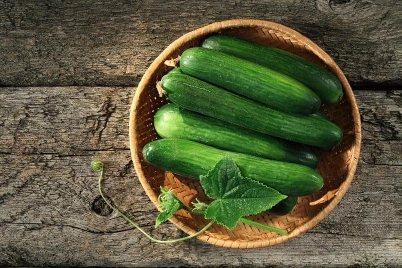 «Одна вода»: чим корисні огірки, і як їх вибрати? 1