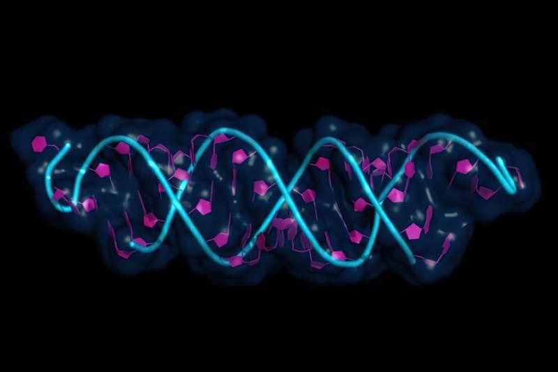 """Як гени визначають """"негенетичні"""" хвороби 1"""