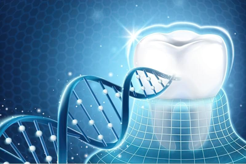 Зуби лікуватимуть на генетичному рівні 1
