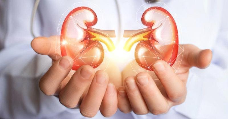 Нефректомія - операція з видалення нирки: показання, наслідки 1